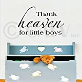 Thank heaven for little boys Vinyl Lettering Wall Sayings Vinyl Wall Quotes Vinyl Wall Art