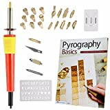 Go Plum Crazy Wood Burning Tool Kit Set With Best Selling Book Pyrography Basics Techniques and Exercises for Beginners