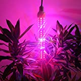 Derlights 80W Full Specreum Led Plant Grow Light Bar with UV & IR, 360 degree lighting, 100pcs SMD5730, AC 85~265V, for Indoor Gardening Hydroponics System Greenhouse Flowering Plant Lighting (80W)