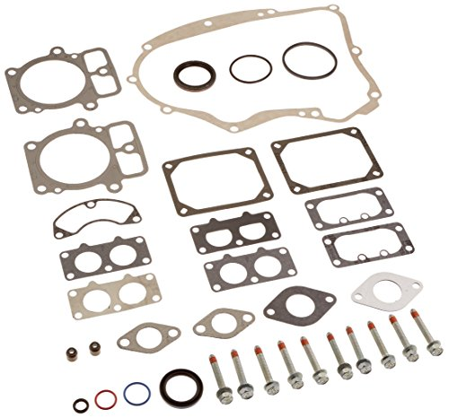 Briggs & Stratton 694012 Engine Gasket Set Replacement for Model 499889 ()