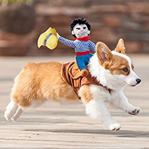 Patgoal Cowboy Rider Dog Costume for Dogs Clothes Knight Style with Doll and Hat for Halloween Christmas Holiday Day