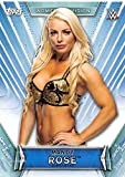 2019 Topps Women's Division WWE Wrestling #23 Mandy Rose Official World WWE Wrestling Entertainment Trading Card