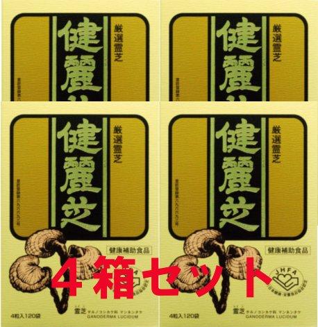 健麗芝 4粒×120袋 【4箱セット】 B00BETVSJI