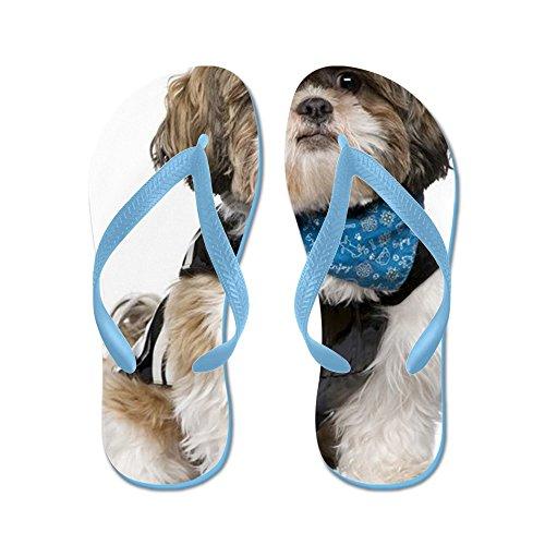 Cafepress Shih Tzu - Flip Flops, Roliga Rem Sandaler, Strand Sandaler Caribbean Blue