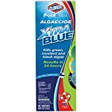 Clorox Pool and Spa Algaecide