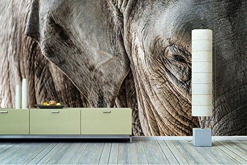 51cOVMJT67L - Elefantenhaut Tapete