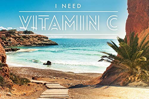 I Need Vitamin C - Pathway to Beach (16x24 Fine Art Giclee Gallery Print, Home Wall Decor Artwork Poster)