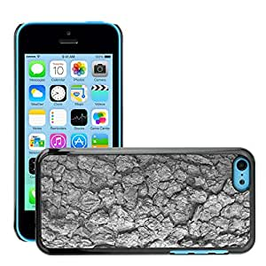 Print Motif Coque de protection Case Cover // M00158088 Corteza de árbol Textura de corteza de // Apple iPhone 5C