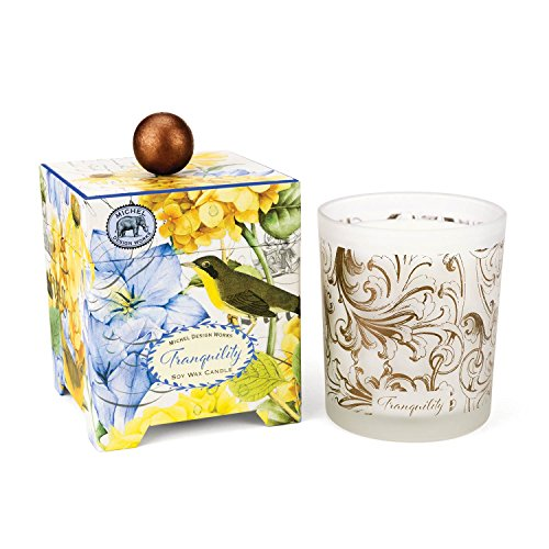 Michel Design Works Gift Boxed Soy Wax Candle, 14-Ounce, Tranquility