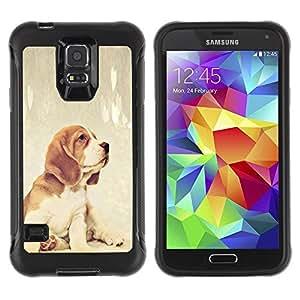 LASTONE PHONE CASE / Suave Silicona Caso Carcasa de Caucho Funda para Samsung Galaxy S5 SM-G900 / Beagle Foxhound Puppy Baby Dog