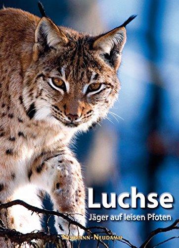 Luchse: Jäger auf leisen Pfoten
