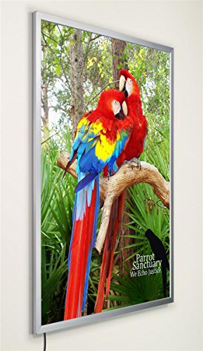Displays2go LED Quick Snap Frame for Translucent Posters, 36x48