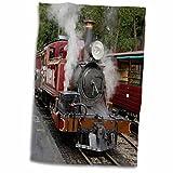 3dRose Danita Delimont - Trains - Australia, Dandenong Ranges. historic steam train. Belgrave Station. - 12x18 Hand Towel (twl_226180_1)