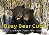 img - for Busy Bear Cubs (A Busy Book) book / textbook / text book