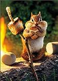 Chipmunk Roasts Marshmallow Funny Birthday Card