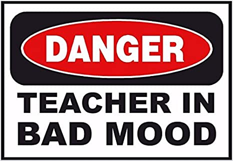 Funny T-shirt DANGER TEACHER IN BAD MOOD great gift idea hovelty
