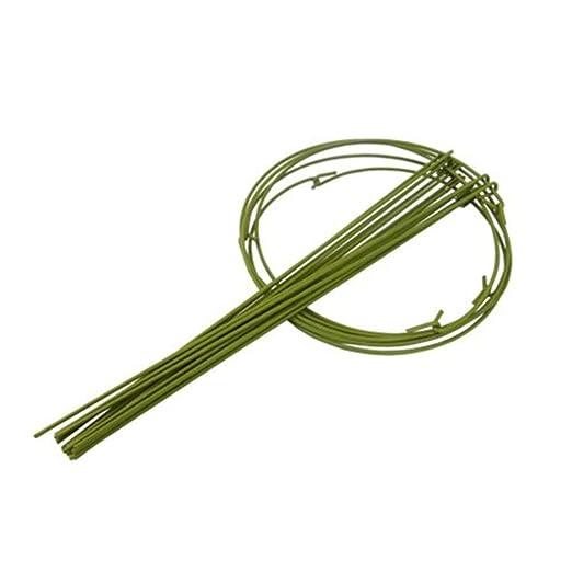 funihut - Lote de 5 jaulas de Apoyo para Plantas con estacas de ...