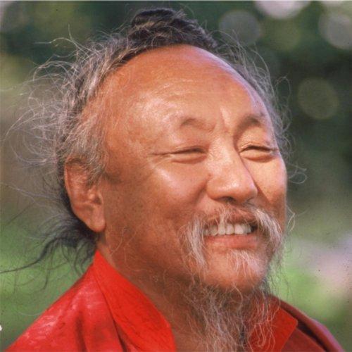 (The Turquoise Horn, Pt. 5 (Translation) [feat. Lama Shenpen Drolma])