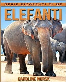 Elefanti Libro Sui Elefanti Per Bambini Con Foto Stupende Storie