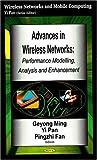 Advances in Wireless Networks, , 1600217133