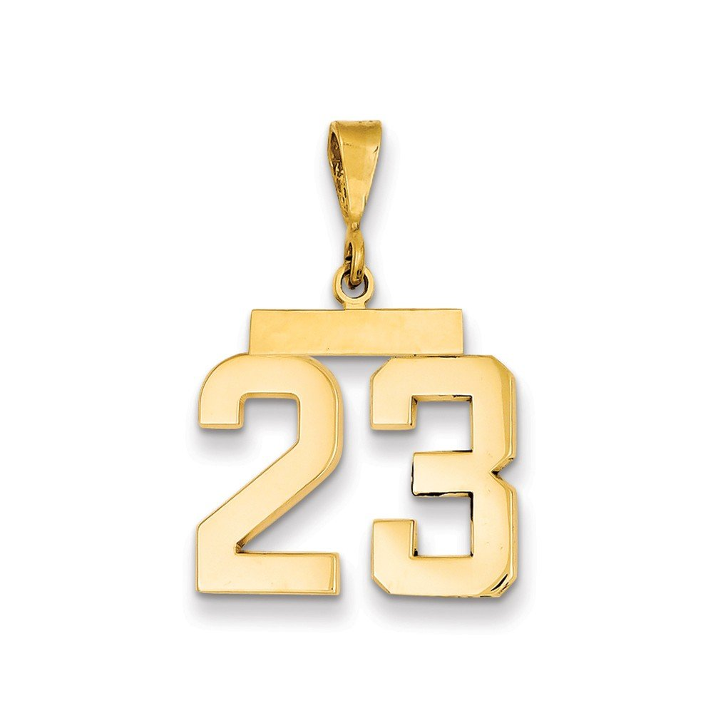 Best Designer Jewelry 14k Medium Polished Number 23 Charm