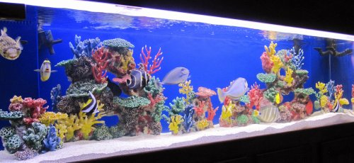 Instant reef artificial coral reef for aquarium decor for Saltwater fish online