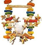 ULTIMATE Chew & Swing Delight Bird Toy – Super Zoo Tradeshow 's Best Bird Product (2010/2011) (Large Bird Size (20''x15''x3''))