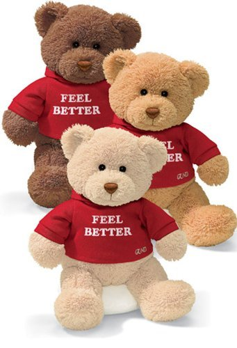(Gund Hugs Feel Better Bear Single)