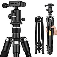 K&F Concept TM2324 62 inch Compact and Lightweight Aluminum Tripod with 360° Ball Head for Digital Camera (Silver)
