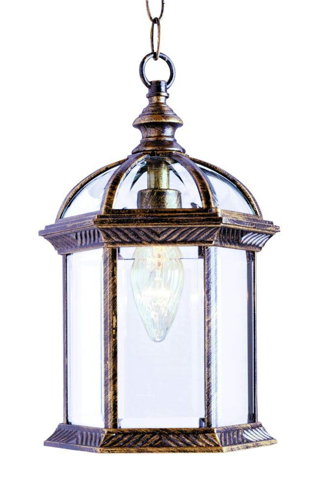 Outdoor 19'' Hanging Lantern Finish: Black Gold