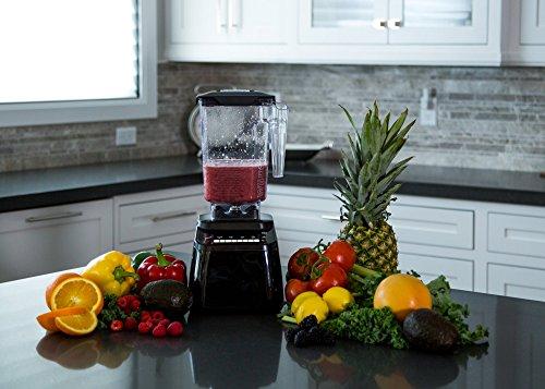 Blendtec Designer 650 Black Blender with Wildside+ Jar
