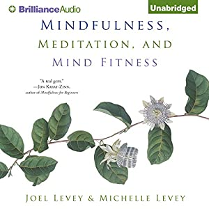 Mindfulness, Meditation, and Mind Fitness Audiobook