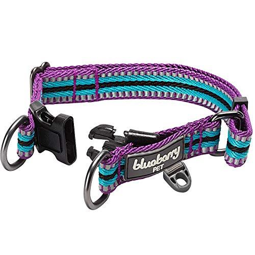 Blueberry Pet 10+ Colors Safe & Comfy Reflective Multi-Colored Stripe Collars