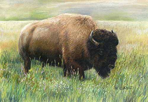 Giclee print In the Meadow A painting of a buffalo or bison grazing in a meadow, signed limited edition print.