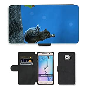GoGoMobile Flip PU Leather Wallet Case with Credit Card Slots // M00118338 Squirrel Animal Rodent Sky Resting // Samsung Galaxy S6 (Not Fits S6 EDGE)