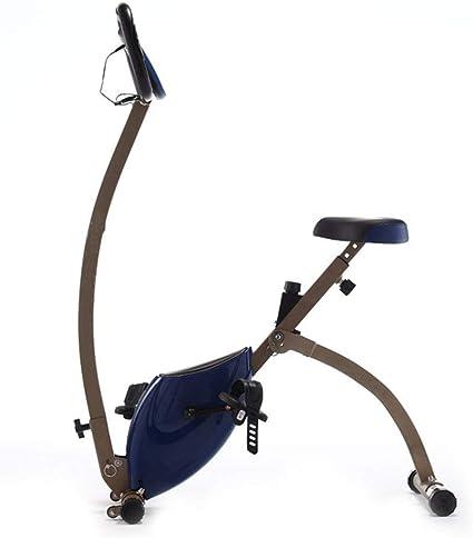 WZB Bicicleta de Spinning casera Duradera Bicicleta Ultra ...