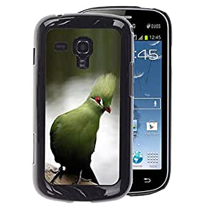 A-type Arte & diseño plástico duro Fundas Cover Cubre Hard Case Cover para Samsung Galaxy S Duos S7562 (Blue Parrot Tropical Lake Water Branch)