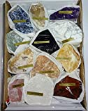 12pc Premium Quality Rough Crystal Healing Gemstone Raw Metaphysical Stone Collection & Gift Box Set