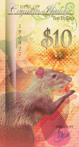 10 Dollars Polymer 2016 Cayman Islands Cayman Rabbit TANUKI COINS