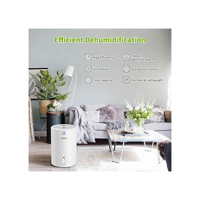 51cPrpOGAzL ➤ Ultraeficiente: área aplicable 5-20m2. La eficiencia de deshumidificación de 300 ml / día (30 ° C, 80% HR) es mejor que el mismo nivel de deshumidificador. ¡Inhibe eficazmente el moho, los ácaros y las bacterias y otros alérgenos, también puede eliminar la humedad y el moho, creando un ambiente interior agradable y refrescante para usted y su familia! ➤ Ultra silencioso: la salida de ruido de todos los deshumidificadores termoeléctricos que probamos fue entre 45-53dB. Kasimir utiliza la tecnología Peltier y opera a menos de 35 dB de ruido. Manténgase alejado de los problemas de ruido! ➤ Seguro y fácil: cuando el tanque de agua está lleno, el indicador de luz roja se enciende y se apaga automáticamente. Cuando duermes, no tienes que preocuparte por el desperdicio continuo de energía y fugas de agua.