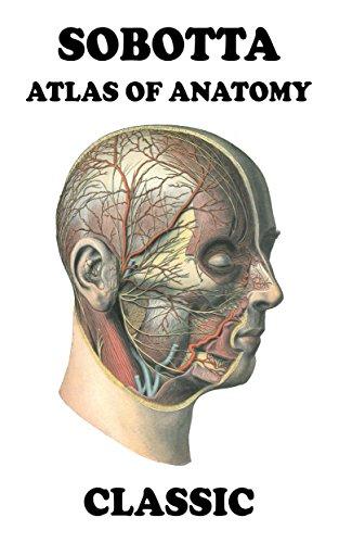 Amazon.com: Sobotta Atlas of Anatomy Classic eBook: Johannes Sobotta ...