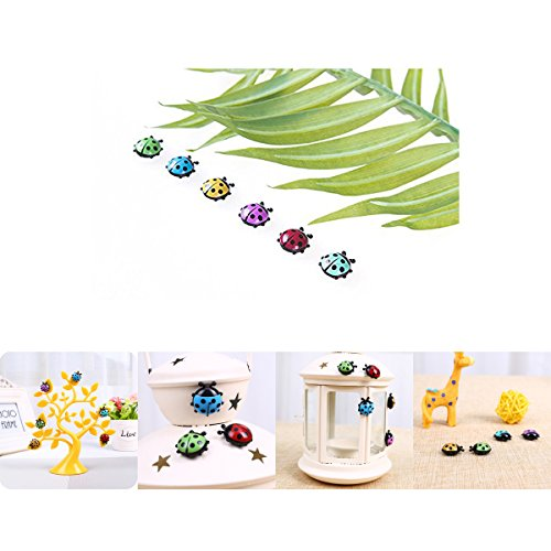 Vanki Presentation Whiteboard Magnetic Decoration Magnets Refrigerator Office Magnet, Ladybug Insect Shape 6 Pcs