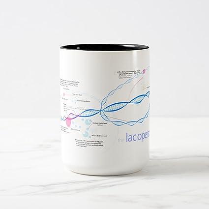 Amazon Zazzle The Lac Operon Diagram Coffee Mug Black Two Tone