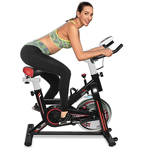 Dolphy Exercise Spin Bike for Home Gym and Indoor Cycling Price & Reviews