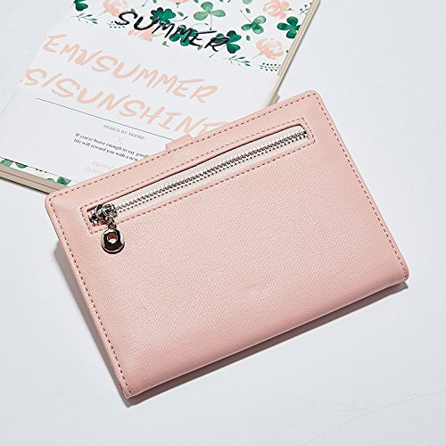 Zhaoyun Travel Passport Wallet Umschlag Dokument Slim Cover Card Case Organizer Halter mit kostenlosem Stift Rosa QPZU33gbe