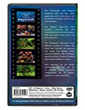 Aquarium DVD - Freshwater and Tropical Aquarium - 2 Hours of Award winning Aquariums from Asia