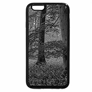 iPhone 6S Case, iPhone 6 Case (Black & White) - AUTUMN IN FOREST