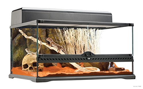 Hagen Exo Terra Short All Glass Terrarium, 24 by 18 by 12-Inch (Best Ball Python Enclosure)