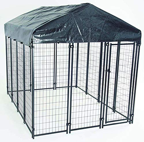 AKC Uptown Dog 6ft x 8ft x 6ft. High Heavy-Duty Dog Kennel with Roof & Cover for Backyards, Large Decks & Patios Includes Free Training Guide