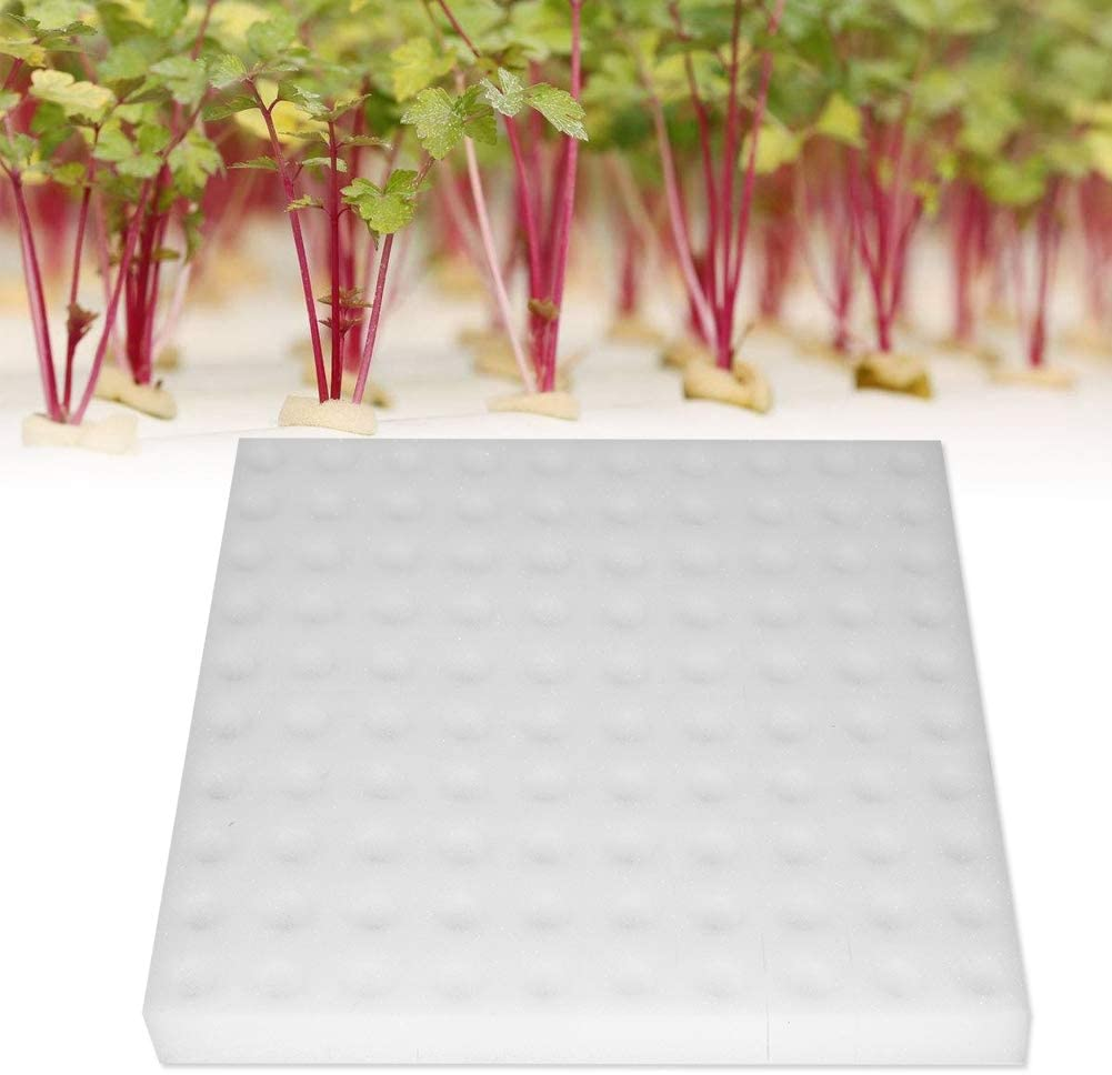 Soilless Hydroponic Sponge Vegetables Cultivation System Tools Gardening H0R9